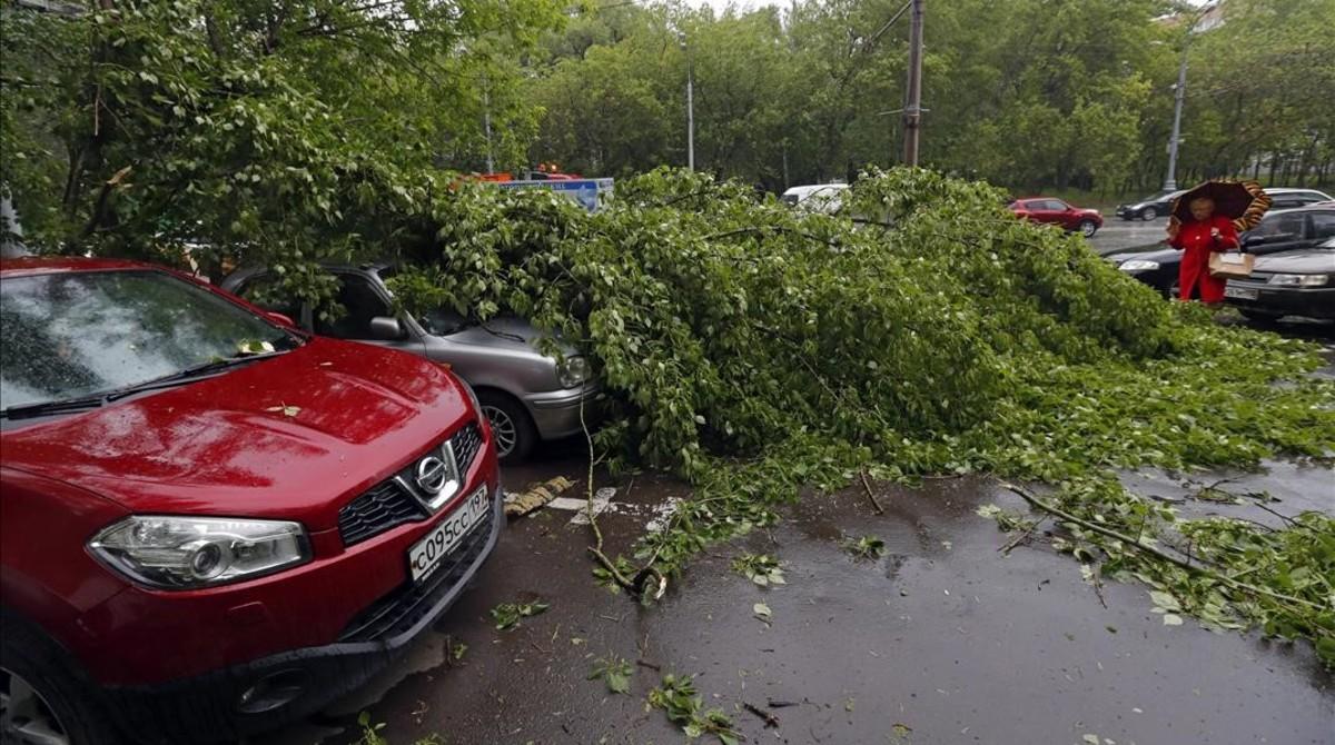 Varios coches dañados por la caída de ramas en Moscú.
