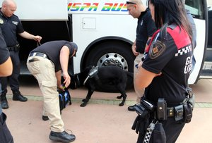 Cornellà acull el primer campus d'unitats canines de policies locals d'Espanya