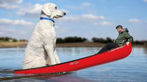 Juji y Chris Cline durante un paseo en barca, en una imagen retocada.