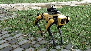 El robot-perro 'Spot', en pleno patrullaje.