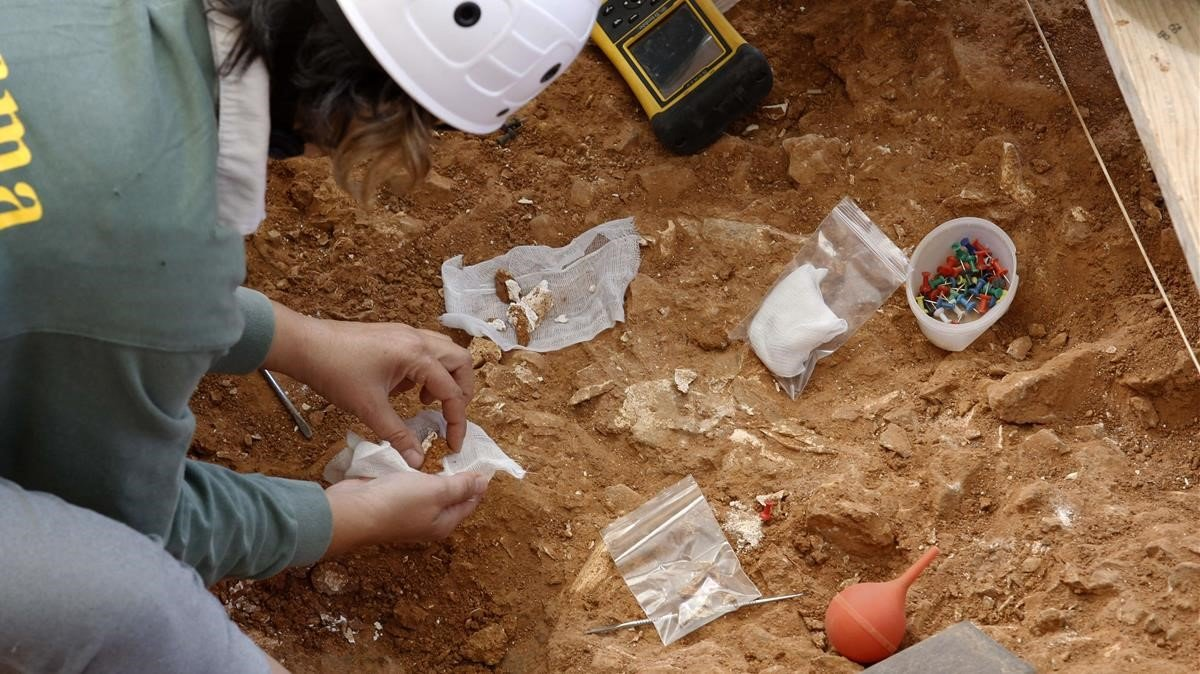 Trabajos en el yacimiento humano de Atapuerca.
