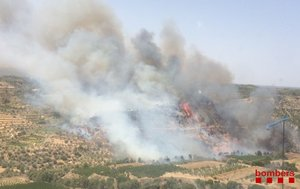 Incendio en la zona de Vinebre, en la Ribera de lEbre, este miércoles.