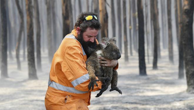 El fuego arrasa el continente australiano.