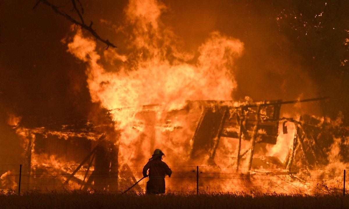 Cientos de bomberos luchan contra los incendios forestales en Australia.