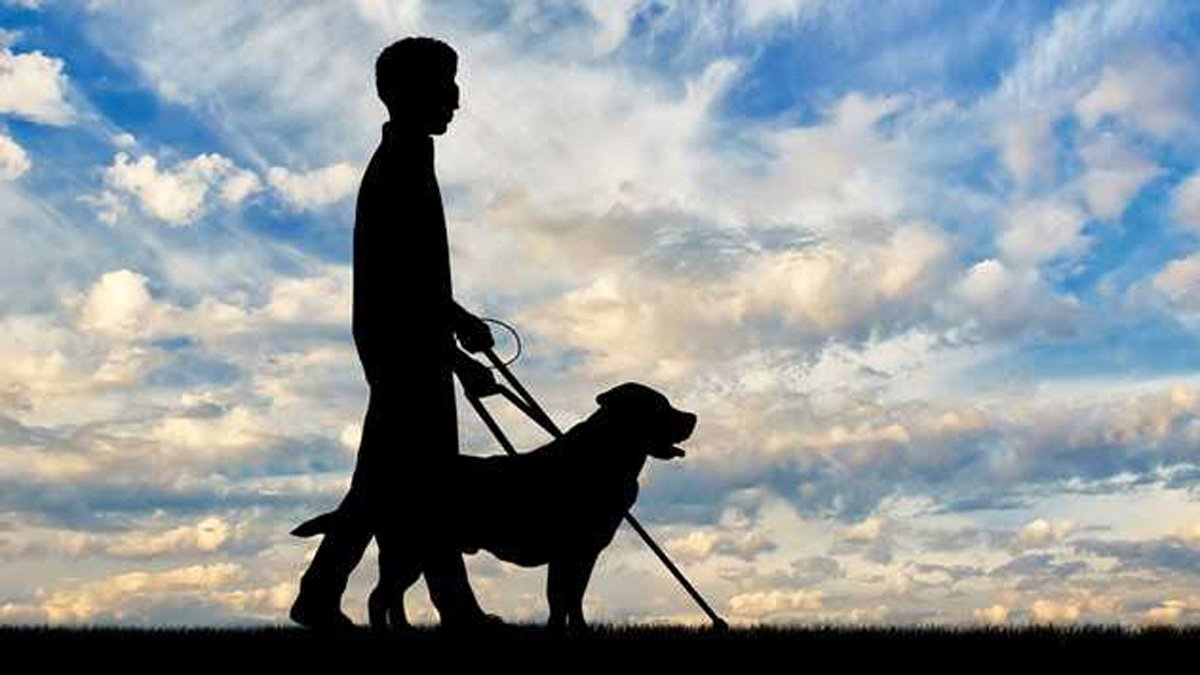 Un invidente y su perro lazarillo.