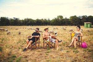 La Masia de Can Gascons acoge un festival con ovejas como invitadas especiales.