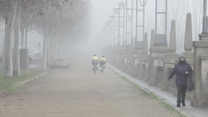 Niebla en las laderas del río Segre, el pasado jueves, en Lleida.