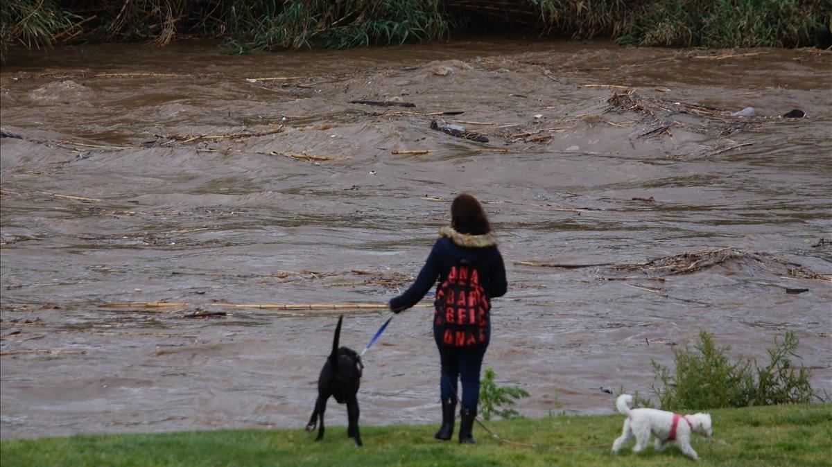 El río Besòs a su paso por Can Peixauet, en Santa Coloma de Gramenet.