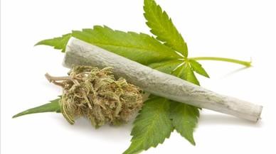 Regulació del cànnabis: respon la ciutadania
