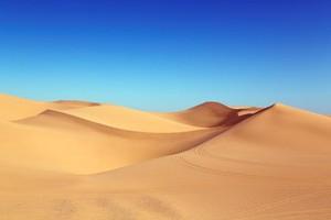 ¿Desert o nu? La intel·ligència artificial encara no els sap distingir