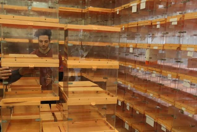 Urnas de metacrilato almacenadas en el Ayuntamiento de Barcelona.