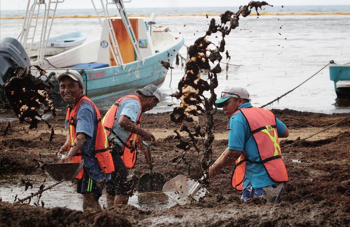 Empleados limpian el sargazo de la playa El Recodo, una playa principalmente de pescadores, afectada por el alga, este lunes, en Cancún (México). El Gobierno de México está abordando la llegada del sargazo en las playas del Caribe como un problema de Estado y sin contratar empresas privadas, declaró este lunes el secretario de Marina, José Rafael Ojeda, quien no obstante restó importancia a la situación.