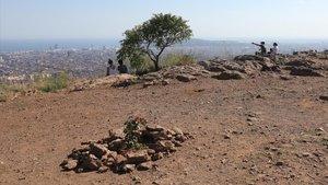 La cima del Turó del Carmel.