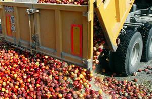 Fruta derramada en Francia en protesta por las importaciones.