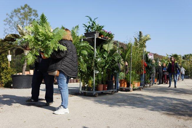 'Outlet' de Vivers Barri, en Gavà, ayer, en la liquidación de su estoc.