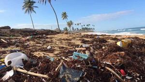 Residuos plásticos en una playa.