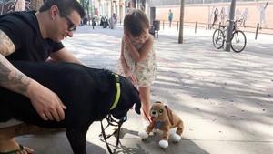 lainz40058694 barcelona 20170601 un perro huele a una ni o con un perrito 170911111116
