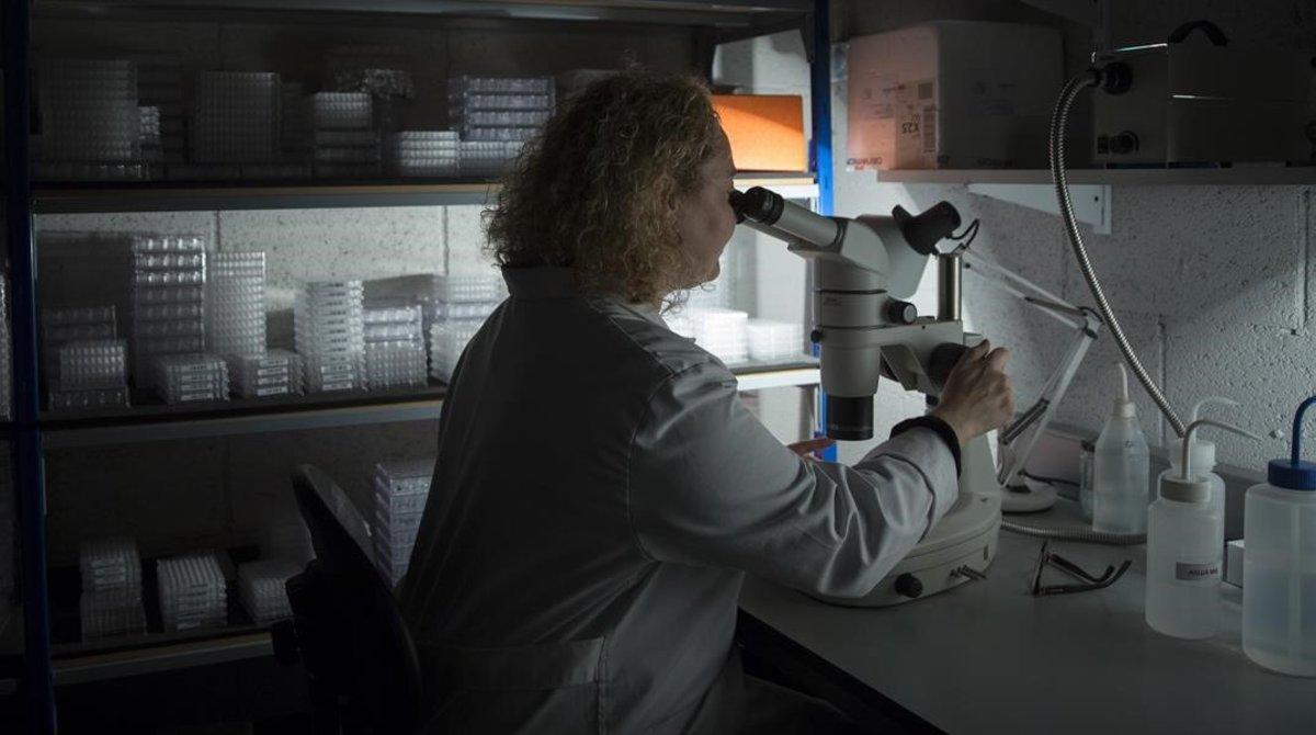 La doctora Eva Estebanez en un laboratorio.