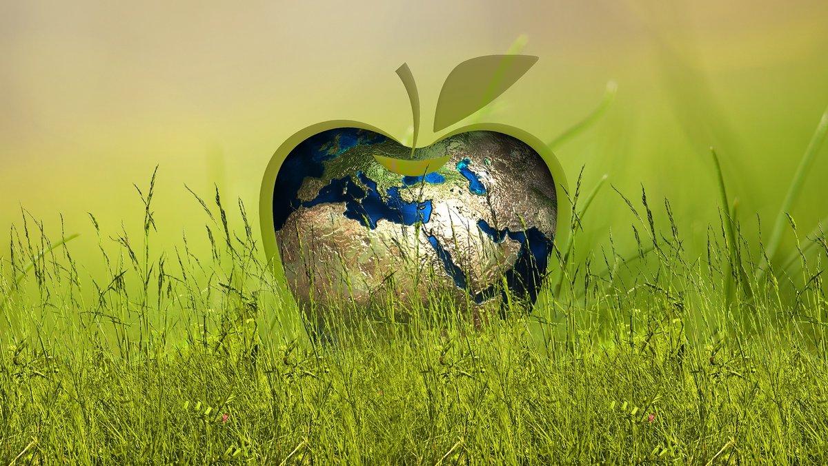 El planeta tiene unos recursos limitados.