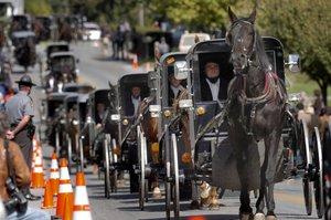 Procesión de carros tirados por caballos de una comunidad 'amish' en Georgetown.