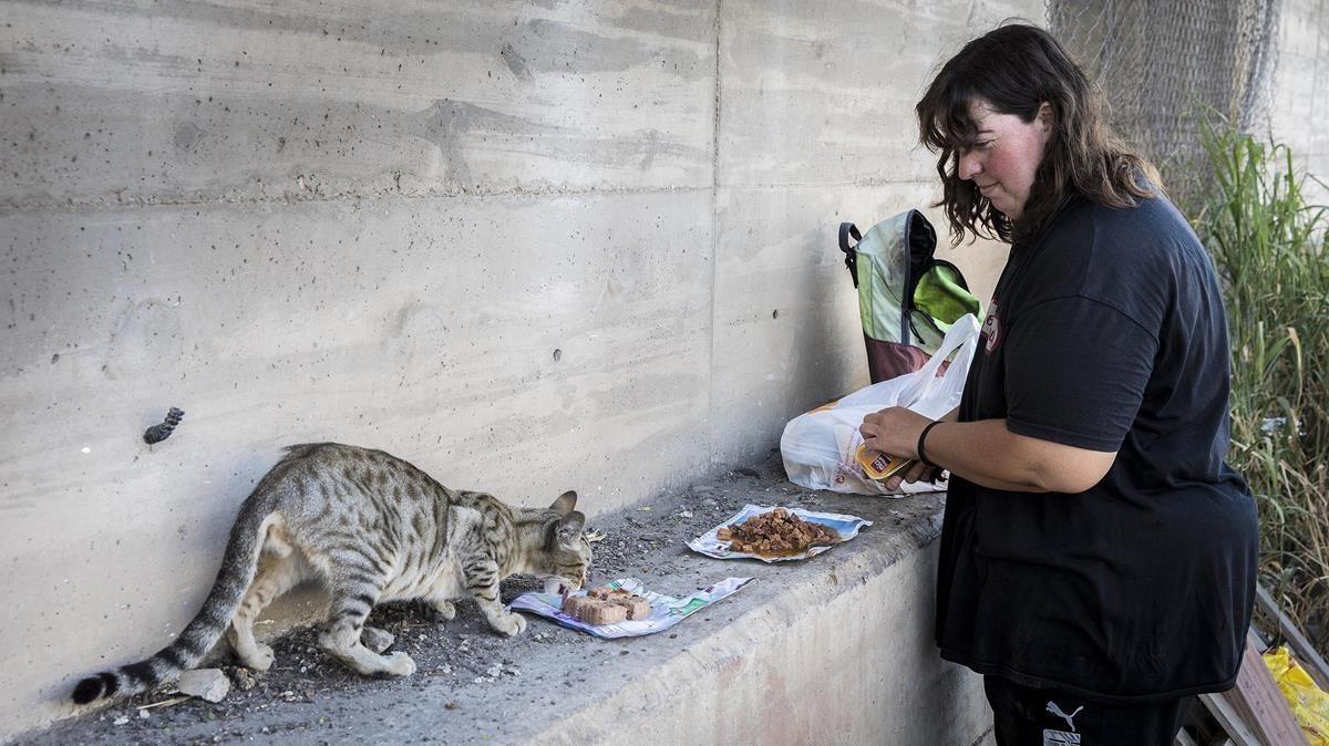 Carol García alimenta a un gato en una de las colonias del puerto.
