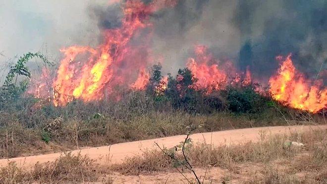 Las ONG achacan los incendios en la Amazonía a la retórica de Bolsonaro.