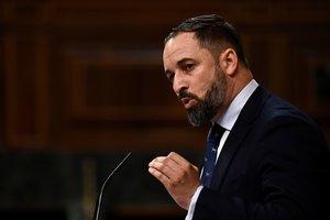 El líder de Vox, Santiago Abascal, en el Congreso de los Diputados.