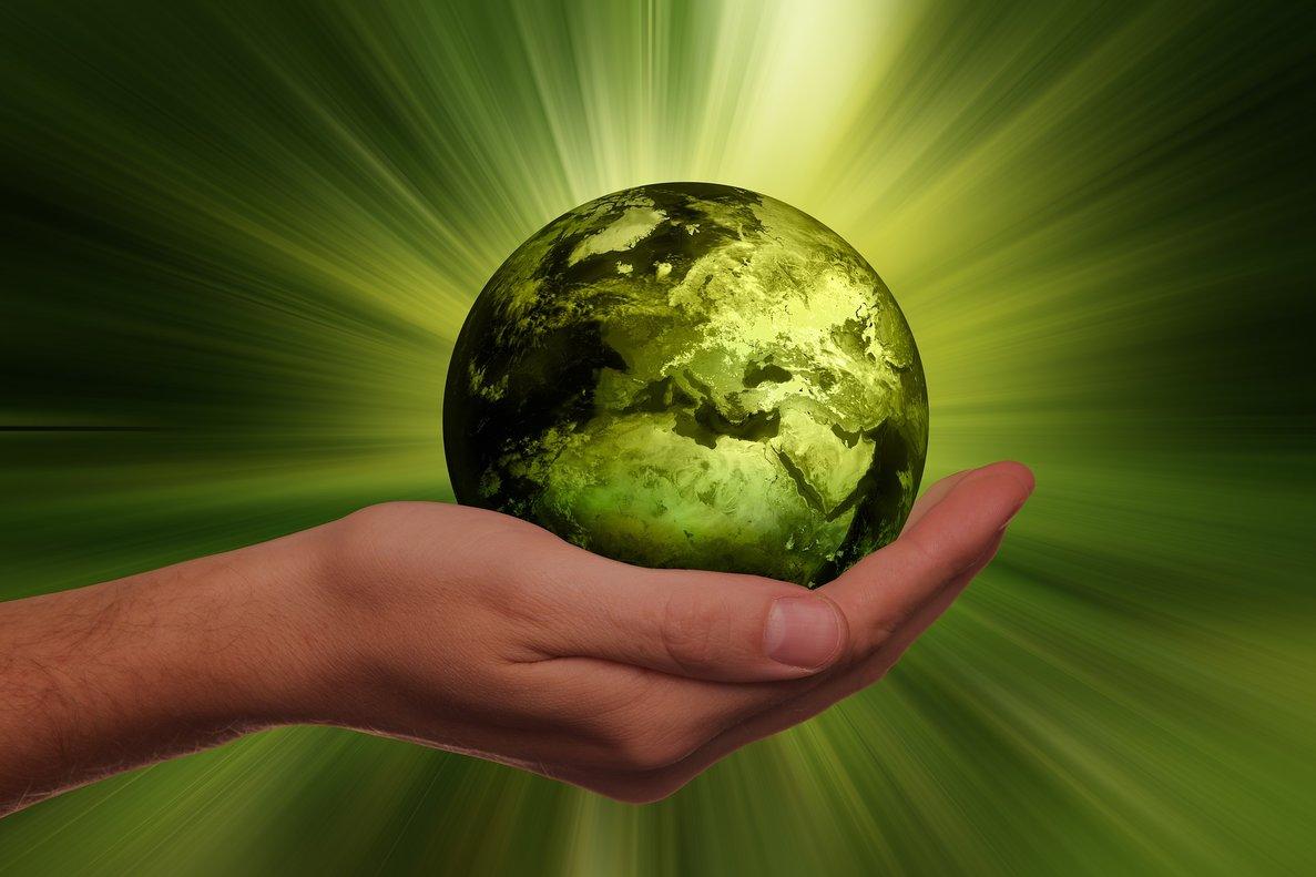 Bioeconomía: ¿es el modelo del futuro?