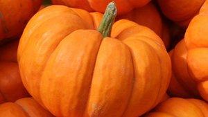 La carbassa després de Halloween: propietats i receptes
