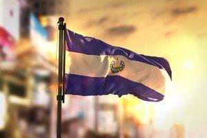 El Conasav fue creado en 2016 en respuesta a los diferentes problemas medioambientales existentes en El Salvador.