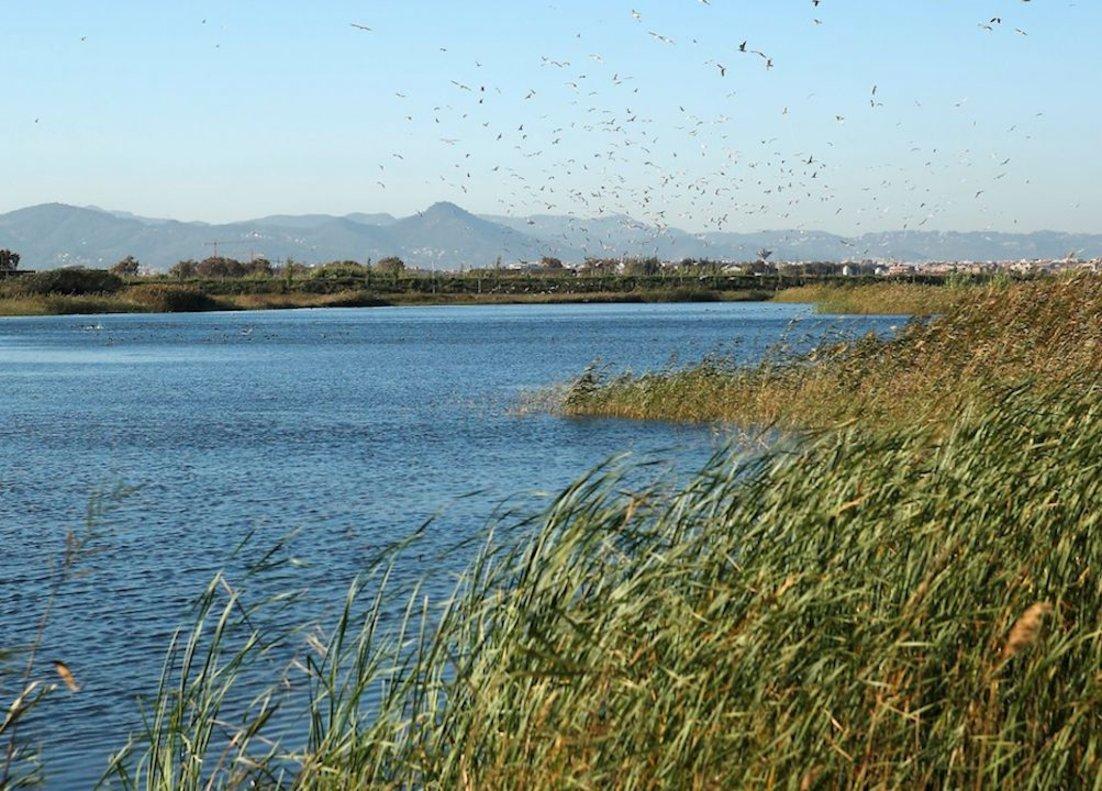 El repte de l'aigua: combatre el canvi climàtic i generar ocupació de qualitat