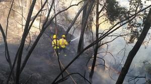 Las dotaciones de Bombers trabajan para extinguir un incendio forestal en Hostalets de Pierola