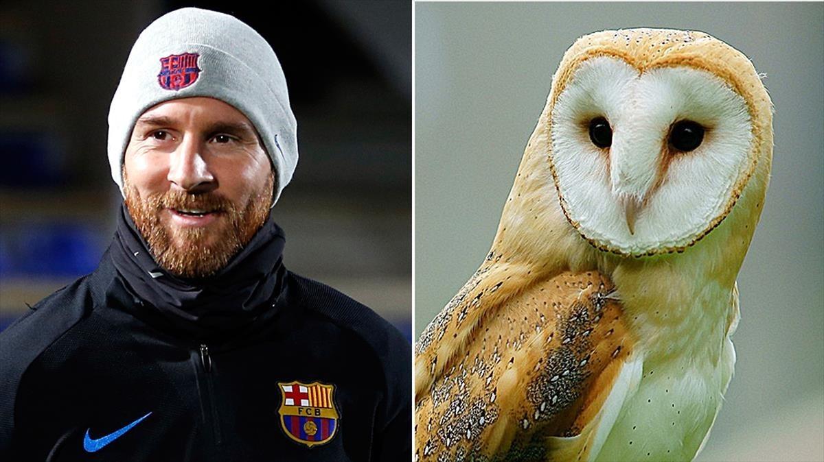 Messi, l'au de l'any i del segle