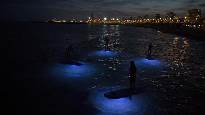 Sal de noche a pillarte un buen 'paddle surf'