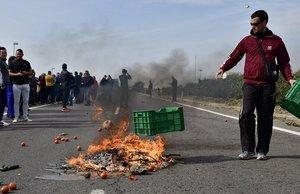 Agricultores arrojan y queman sus productos en la calzada mientras cortan una carretera de Almeria