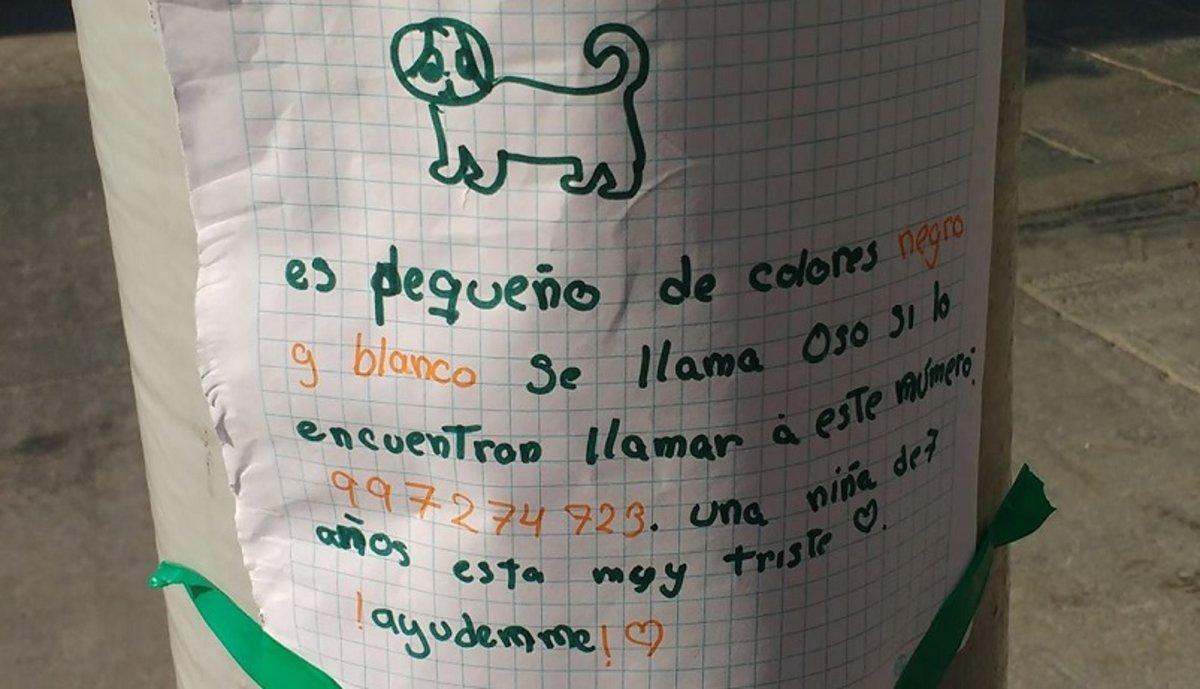 El tierno cartel de una niña para buscar a su perro perdido