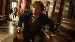 Un vídeo especial de la nova pel·lícula de l'univers de Harry Potter