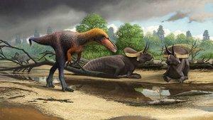 Trobat el 'germà petit' del 'Tyrannosaurus rex'