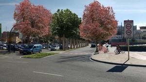 Imagen del resultado de las obras de remodelación de la avenida Sant Ildefons de Cornellà