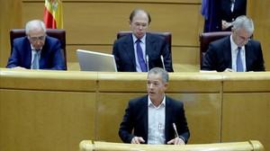 El portavoz socialista en el Senado, Ander Gil.