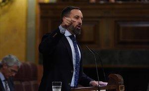 Santiago Abascal, durante su intervención en el Congreso el pasado día 4.