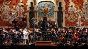 La Orquestra Camera Musicae.