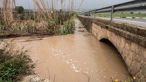 Campos inundados en el municipio de Pina (Mallorca) debida a la crecida de los rios por el paso de la borrasca Gloria