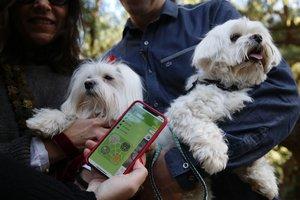 Las mascotas cuentan con sus propias apps