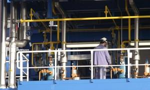 Un operario en la fábrica de Bayer en Tarragona.