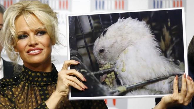 Pamela Anderson revoluciona la Asamblea Nacional francesa