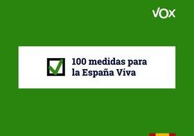 Programa electoral de Vox en las elecciones generales 2019.