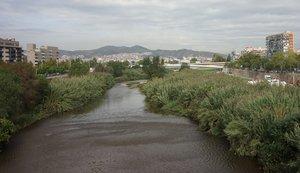 La ribera del río Besòs, a su paso por Santa Adrià.