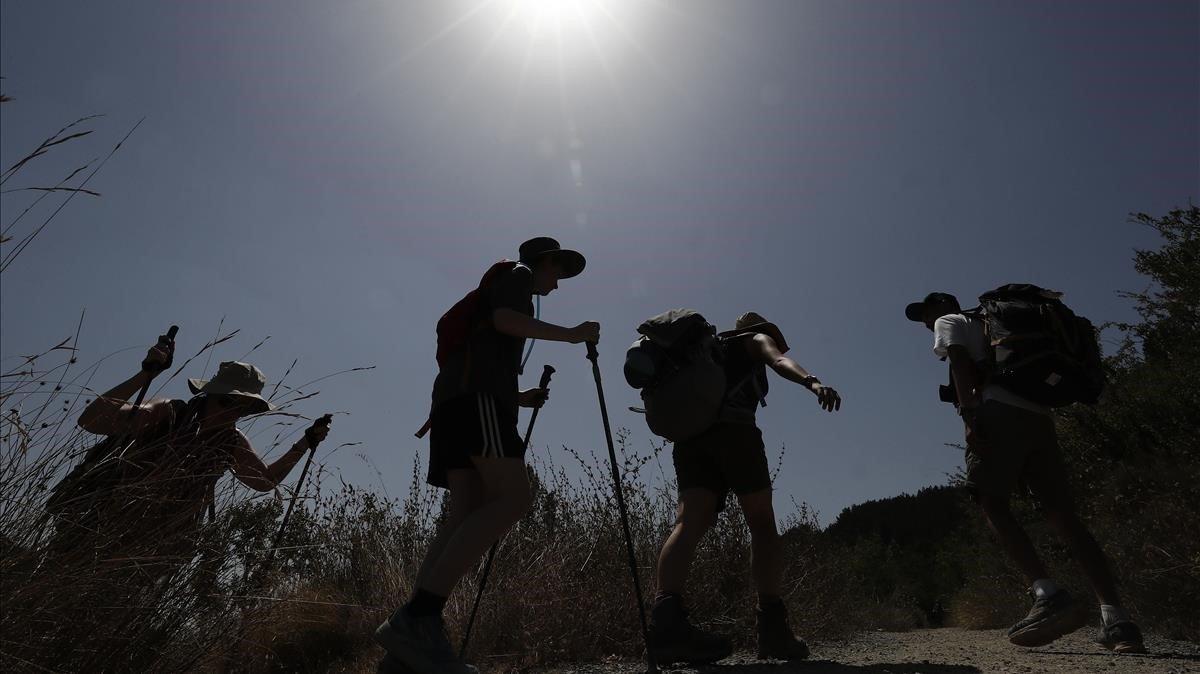 Un grupo de peregrinos, durante una etapa del Camino de Santiago, en agosto del 2018.