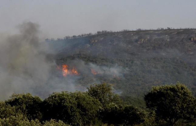 Foto de archivo de un incendio forestal.